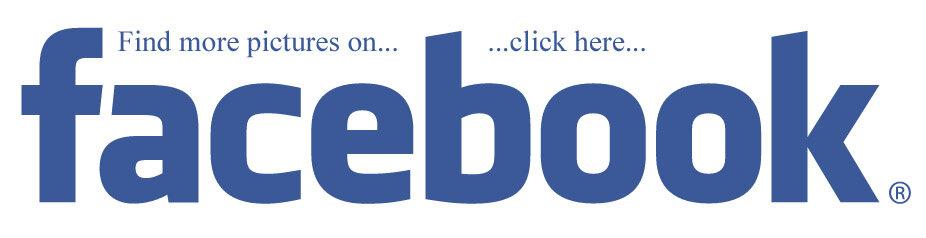 Auf unserer Facebook Seite haben wir jede Menge Fotos zum...