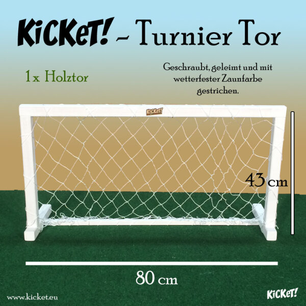 Tournament goal (wood)