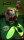 Boab - The ACK ACK (Giant Torturer)