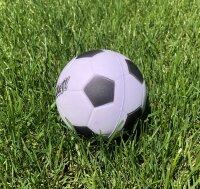Ball (foam)